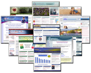 WordPress Screenshot Collage