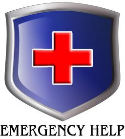 WordPress Emergency Service